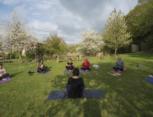 Il moto del cammino e la quiete dello yoga
